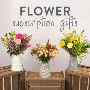 Letterbox Monthly Flower Gift